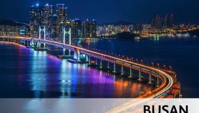 Contest Go Shop - Busan