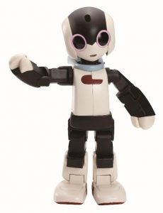Robi - An Interactive Trilingual Robotic Companion