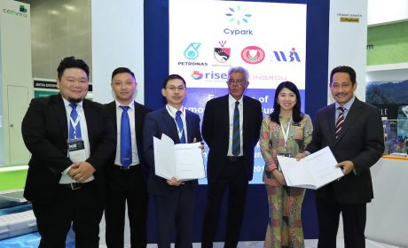 Risen Energy Expands Global Footprint with Order from Malaysian Power Station